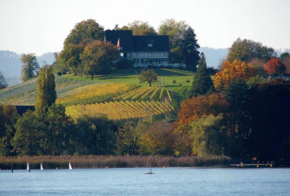 Weinfahrt